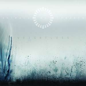 animalsasleaders weightless